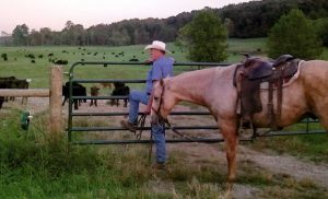 3d Valley Beef Certified Livestock Producer