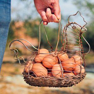 Free Range Heritage Eggs